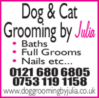 Dog Grooming By Julia Advert