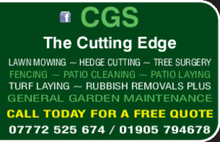 C G S The Cuting Edge Advert