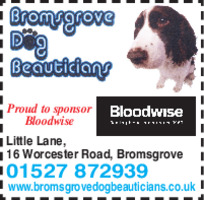 Bromsgrove Dog Grooming Advert