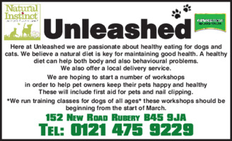 Paws Here Advert