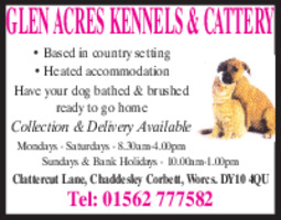 Glen Acres Kennels & Cattery Advert