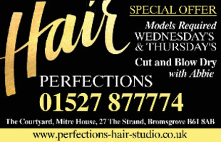 Hair Perfections Advert