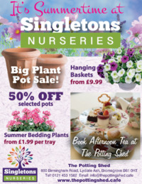 Singletons Advert