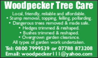 Woodpecker Tree Care Advert