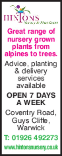 Hintons Nursery Advert