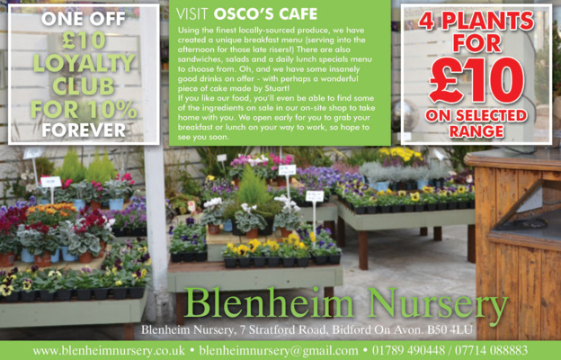 Blenheim Nursery Advert