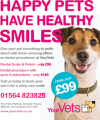 Your Vets Wythall Advert