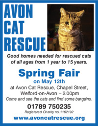 Avon Cat Rescue Advert