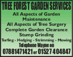 Tree Forest Garden Services Advert