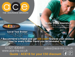 Ace Insurance Services Group Ltd Advert