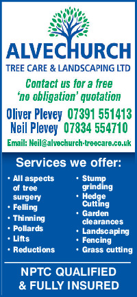 Alvechurch Tree Surgery Advert