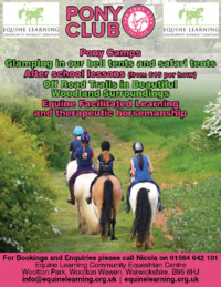 Equine Learning Advert