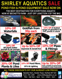 Shirley Aquatics Advert