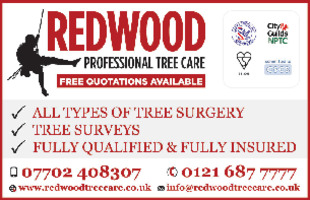 Redwood Tree Care Advert