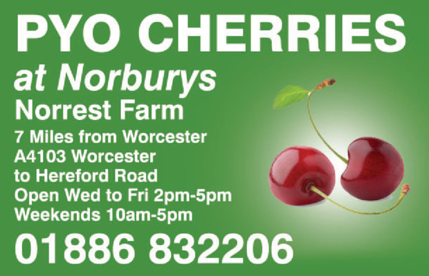 Norburys Cider Advert