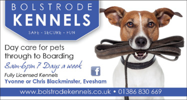 Bolstrode Kennels Advert